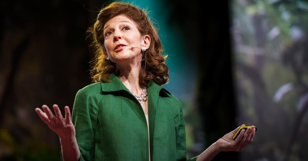 """Picture of Pamela Meyer delivering her ted talk on """"How to Spot a Liar,"""" which included a powerful start intended to shock the audience"""